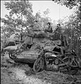The British Army in North-west Europe 1944-45 B11190.jpg