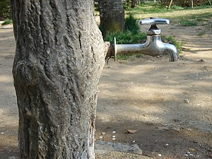 Faucet in a Japanese park