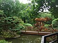 The Japanese Garden at St Mawgan - geograph.org.uk - 1426715.jpg
