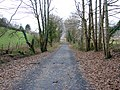 The Mawddach Trail looking westwards - geograph.org.uk - 1091396.jpg