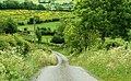 The Springmount Road near Kinallen - geograph.org.uk - 836488.jpg