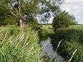 The stream near Mill Farm, Bulkington - geograph.org.uk - 86877.jpg