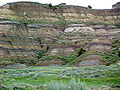 Theodore Roosevelt National Park Slump Formation.jpg