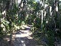 Theodore Roosevelt Nature Trail - panoramio.jpg