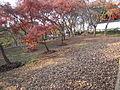Tiger Hill, Suzhou, December 2015 - 44.JPG