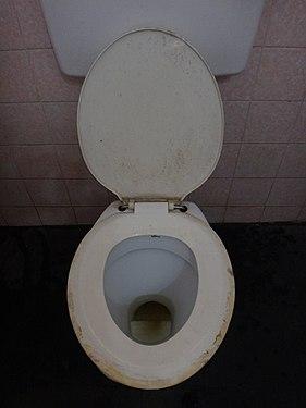 Toilettes- 5.jpg