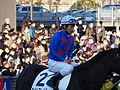 Tokyo Daishoten Day at Oi racecourse (31609213090).jpg