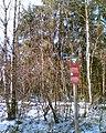 Torfmoor Solling Winter.jpg