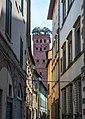 Torre Guinigi tra le case.jpg