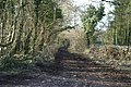 Track on Backwell Hill - geograph.org.uk - 133009.jpg