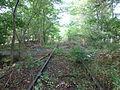 Tracks of Amagerbanen 09.JPG