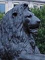 Trafalgar Square (30677456028).jpg