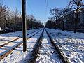 Tram Seestrasse 18.01.2016 11-13-14.jpg