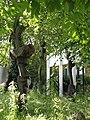 Tree sculptures - geograph.org.uk - 872681.jpg