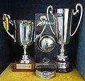 Trofei Trentino Volley.jpg
