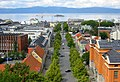 TrondheimFromRoofOfNidarosdomen-improved.jpg