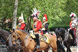 Samuel Vestey, 3rd Baron Vestey - Lord Vestey, Master of the Horse, riding to The Queen's Birthday Parade in 2009