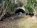 Tunnel on the dismantled Waverley Line - geograph.org.uk - 751392.jpg