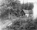 Two men standing in front of a cabin surrounded by garden, Haines, ca 1914 (CURTIS 1949).jpeg