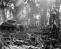 US 129th Inf Reg advance with tanks on Bougainville March 1944.jpg