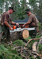 US Navy 050831-N-0553R-005 U.S. Navy Seabees use chainsaws to remove fallen trees in Gulfport, Miss.jpg