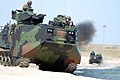 US Navy 070501-N-0193M-288 During a capabilities exercise, amphibious assault vehicles (AAVs) maneuver on the beach as part of a comparison exhibit with the Expeditionary Fighting Vehicle (EFV) for Department of Defense personn.jpg