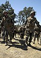 US Navy 080825-N-9584H-035 Seabees carry an injured Seabee during a mass casualty drill.jpg