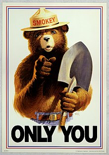Uncle Sam style Smokey Bear Only You.jpg