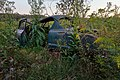 Uncovered Automobile Wreckage in Northeastern Pennsylvania, USA.jpg