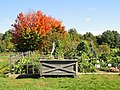 University of Kentucky Arboretum - DSC09370.JPG