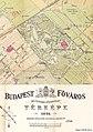 Városliget térképe 1884.jpg