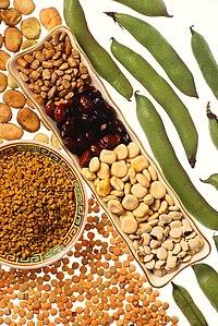 Various legumes.jpg