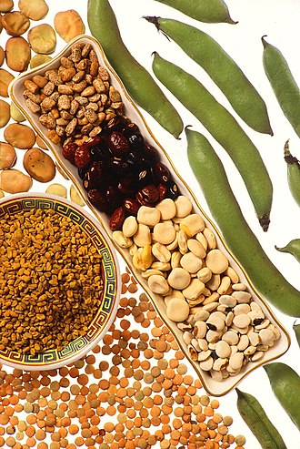 Legume - A selection of various legumes