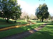 Veale Gardens 2