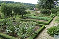 Vegetable Garden at Pockerley Manor - geograph.org.uk - 1396355.jpg