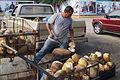 Vendedor de agua de coco I.JPG