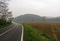 Viale Basubio - panoramio.jpg