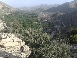 View from Chief Minister Residence, Ziarat - panoramio.jpg