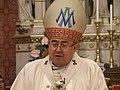 Vinko Cardinal Puljić.jpg