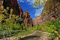 Virgin River Zion NP. (30595616656).jpg
