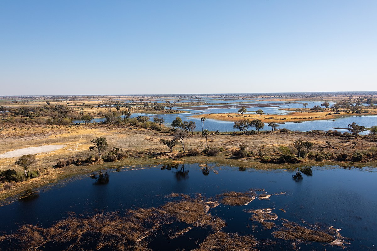 Vista aérea del delta del Okavango, Botsuana, 2018-08-01, DD 25.jpg