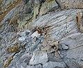 Vysoké Tatry, Mengusovská dolina, feráta na Rysy, září 2011 (3).JPG