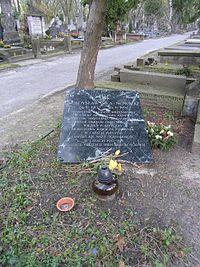 Władysław Siła-Nowicki grób.JPG