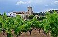 WLM14ES - Monestir de Sant Sebastià dels Gorgs entre vinyes - MARIA ROSA FERRE.jpg