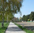 Waldmühle - panoramio - Immanuel Giel (3).jpg