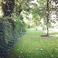 Walk - panoramio (4).jpg