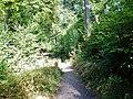 Wanderweg beim Sonnenberg - panoramio (1).jpg