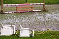 Wesselburenerkoog 11.05.2012 12-04-53.jpg