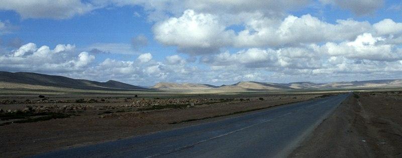Western sahara landscape (north)