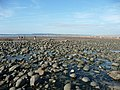 Westward Ho^ , Stones, Sand and Coastline - geograph.org.uk - 1490570.jpg